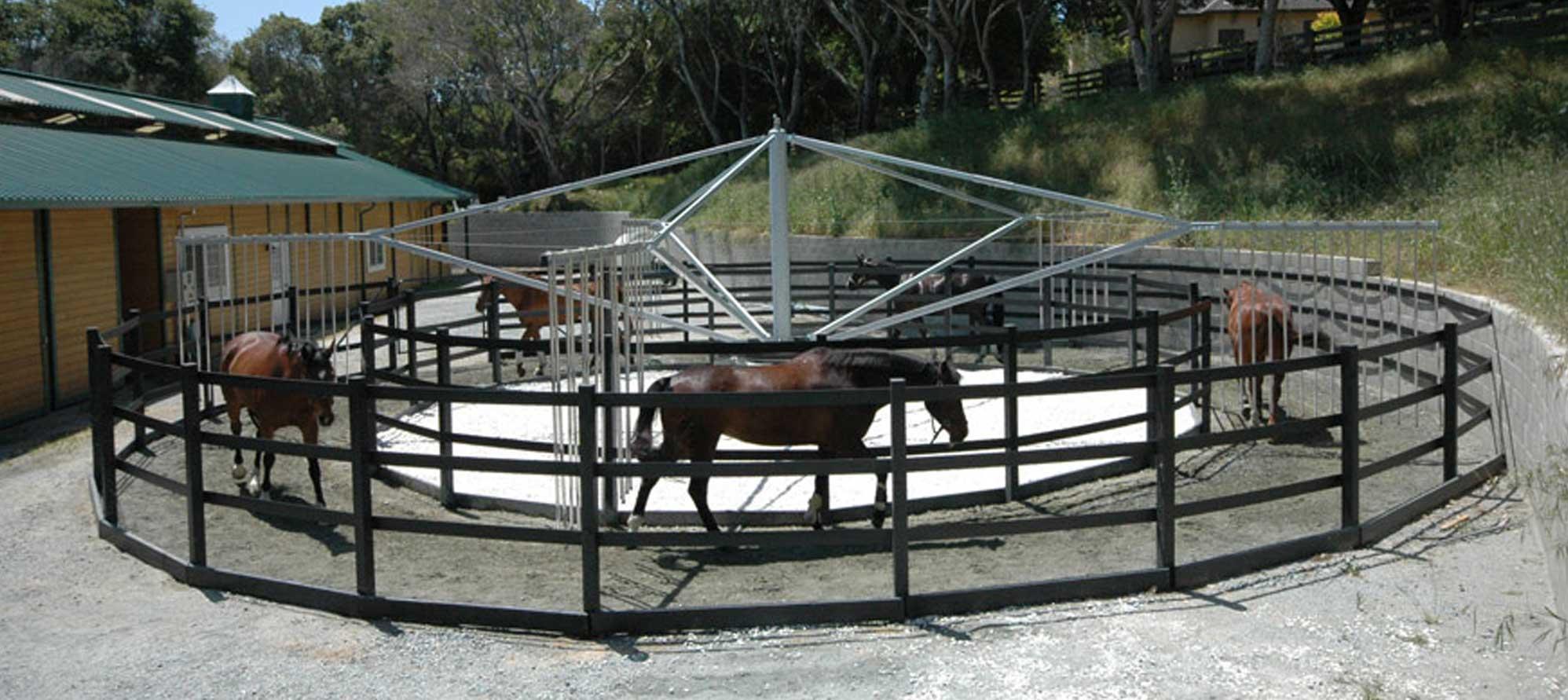 horse exerciser